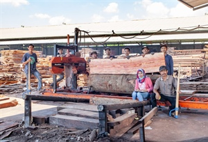 Upgraded sawmill eliminates an entire production step for an...