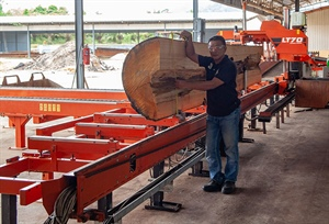 Malaysia: Now up to 15% Reimbursement for New Sawmill Machinery...