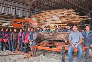 Introducing new sawmilling technology to Bhutan