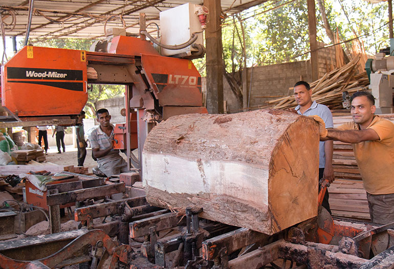 Thin-kerf sawmilling gaining ground in Asia - Wood-Mizer Asia HQ