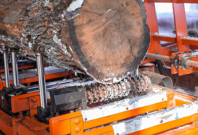 See the New Sawmills used by a Czech Company to Fulfill More